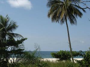 SL ocean scene